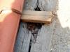 einbau-der-traeger-in-den-kreuzgang-foto-h-p-stadermann-ta-7-2